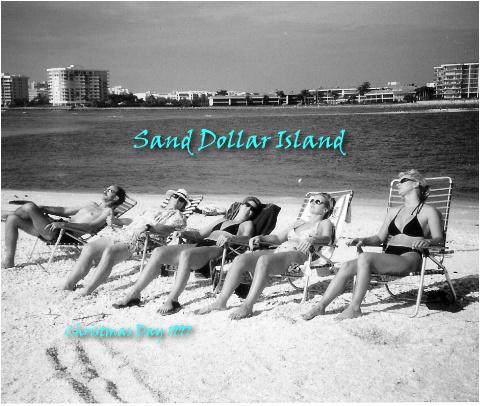 Sand Dollar Island Final!