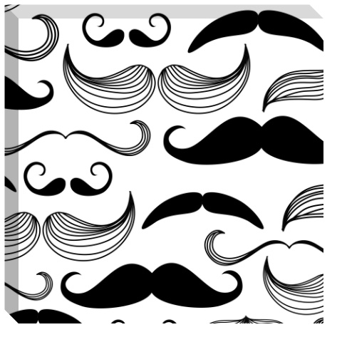 Black and White Mustaches