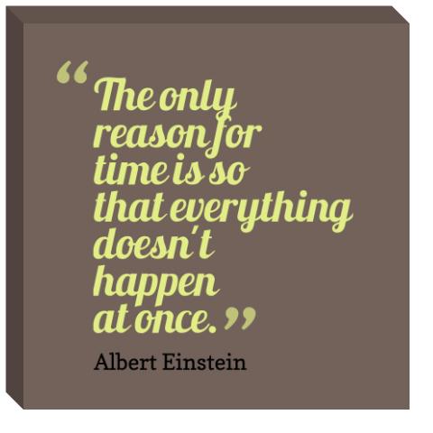 Albert Einstein Only Reason for Tim
